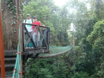 teh canopy walk