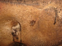 bugs in the caves