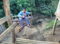 our mahout