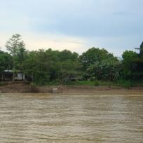 The Kinabatngan River