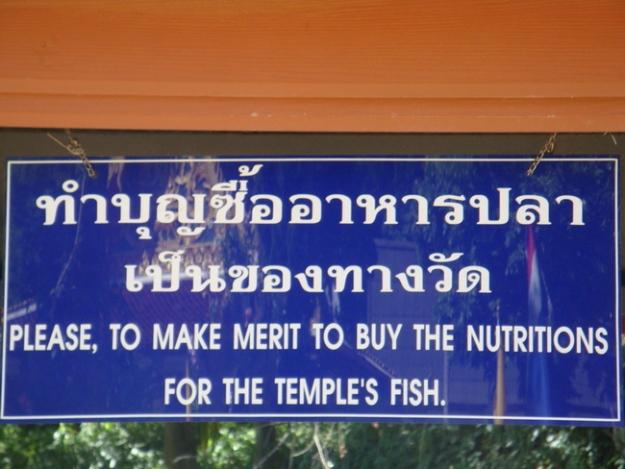 Thailand 2009 487