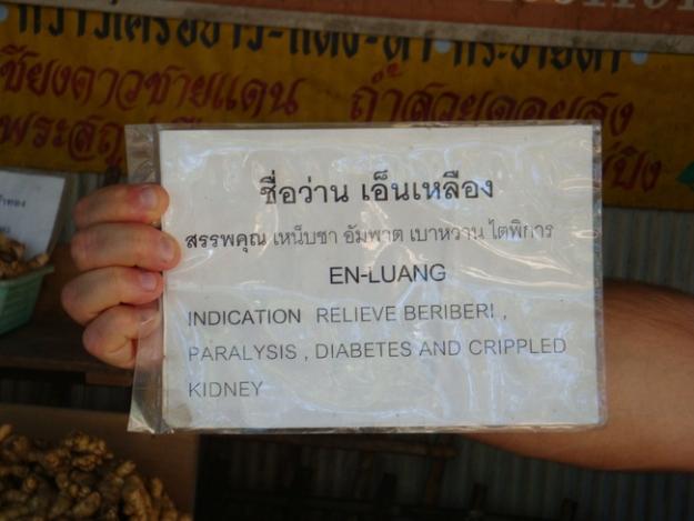 Thailand 2009 507