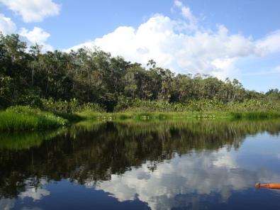 the lake surrounding the lodge
