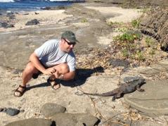 Crazy marine iguanas