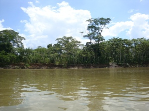 heading up the Napo River