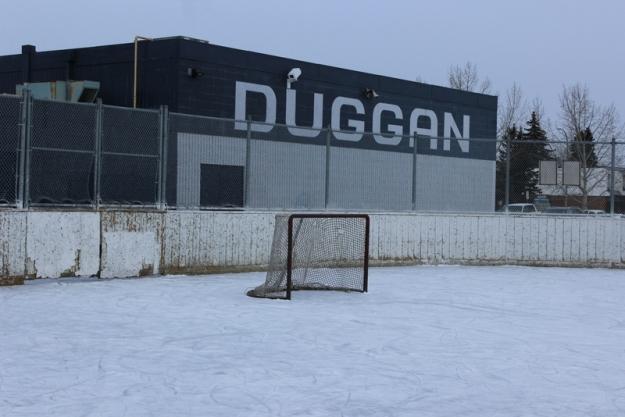 real hockey 5