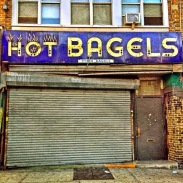 where you can find real bagels