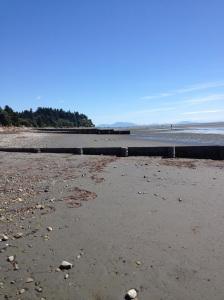Beautiful Crescent Beach, BC