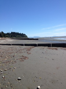 Beautiful Crescent Beach, BC
