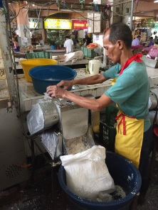 Fresh coconut shreds