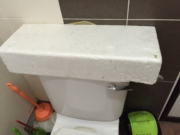 A Malaysian Solution. Why get a new toilet when the porcelain top breaks? The styrofoam box it came in works fine