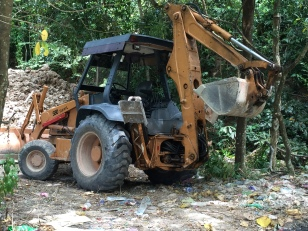 Right next to the Jaguar, blue collar foreign workers wreck the environment