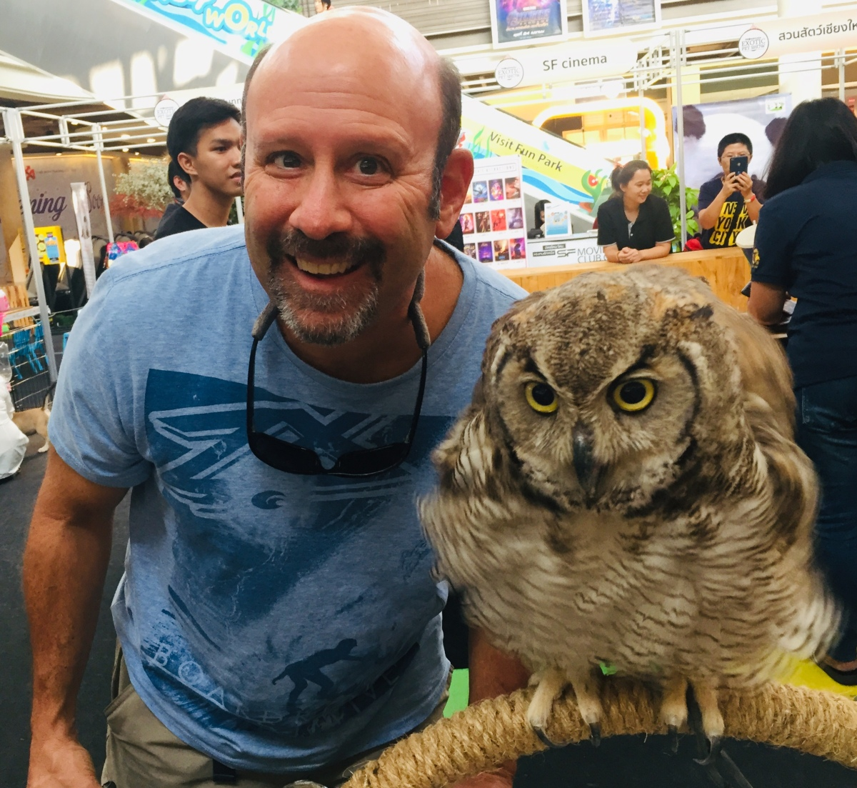 Me and My Owl